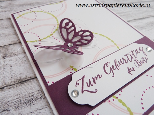 stampin_up_orient_eastern_butterfly_birthday_2_201706