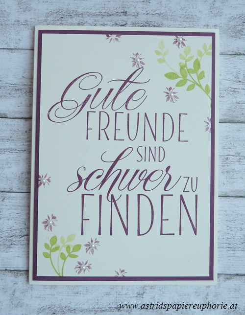 stampin_up_fuer_freunde_friends_1_201706