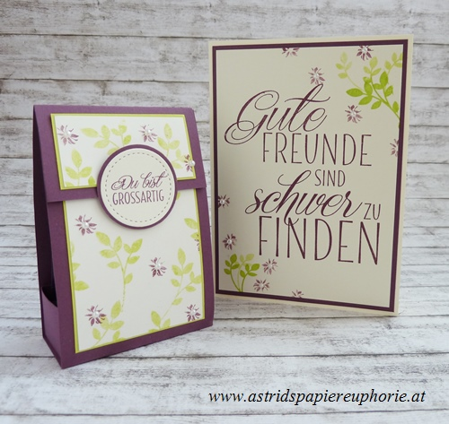 stampin_up_fuer_freunde_lovely_friends_teabox_teebox_2_201706
