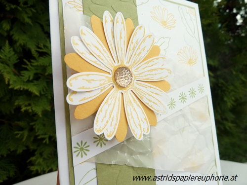 stampin_up_gaensebluemchen_daisy_birthday_2_201708
