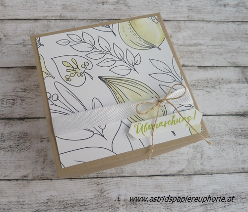 stampin_up_meine_Farben_colors_2_201708