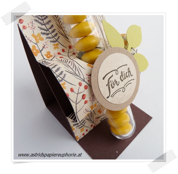 stampin_up_autumn_herbst_reagenzglas_goodie_2_201710