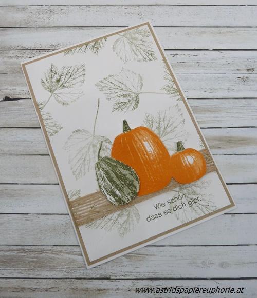 stampin_up_pumpkin_kuerbis_Gourd Goodness_1_201710