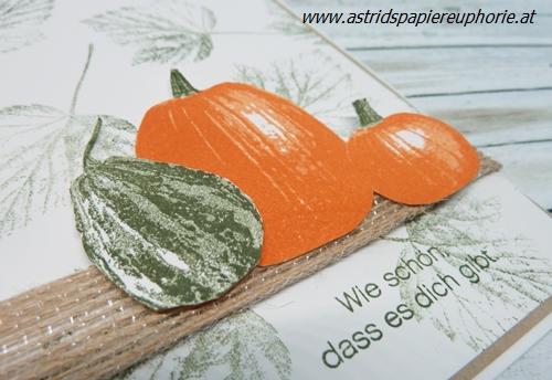 stampin_up_pumpkin_kuerbis_Gourd Goodness_2_201710