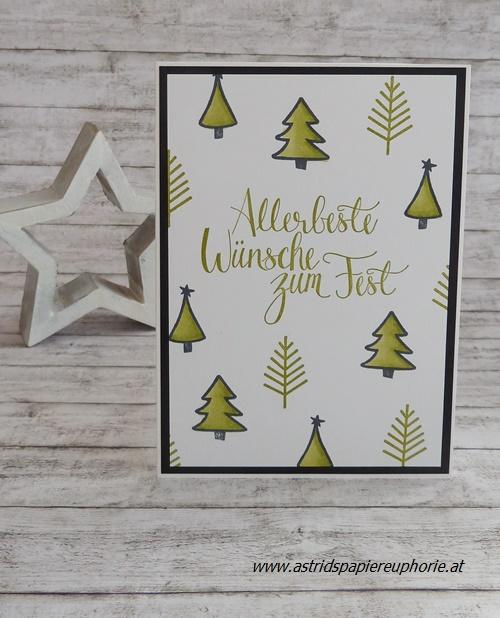 stampin_up_malerische_weihnachten_christmas_1_201711