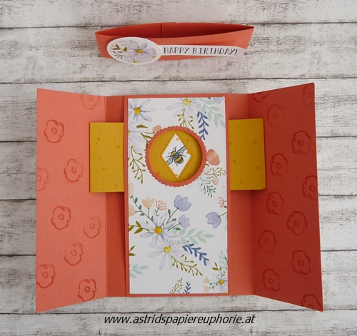 stampin-up-shutter-peekaboo-birthday-fancy-folds-4_201804