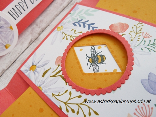 stampin-up-shutter-peekaboo-birthday-fancy-folds-5_201804