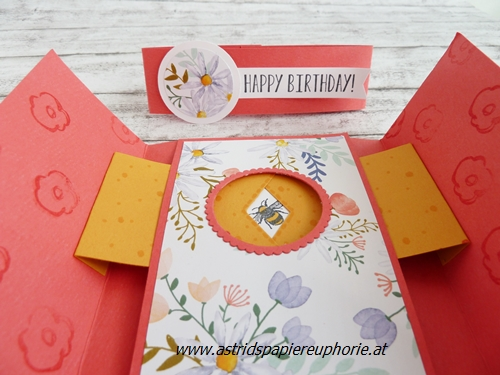 stampin-up-shutter-peekaboo-birthday-fancy-folds-6_201804