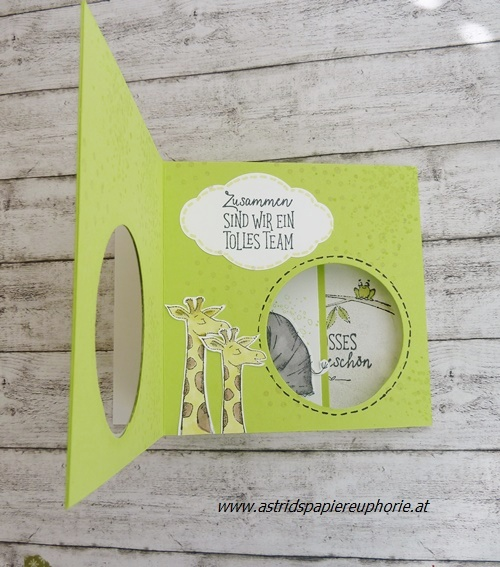stampin-up-wild-auf-gruesse-fancy folds-3a_201805