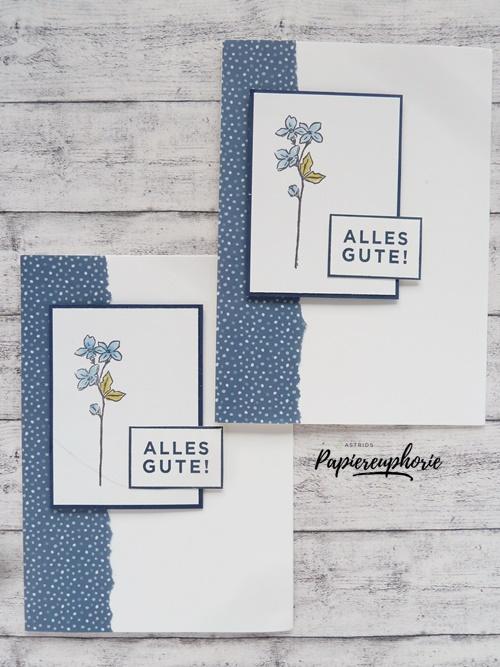 stampinup-glückwunsch-karte-birthdaycard-florale-jahreszeiten-astridspapiereuphorie-2