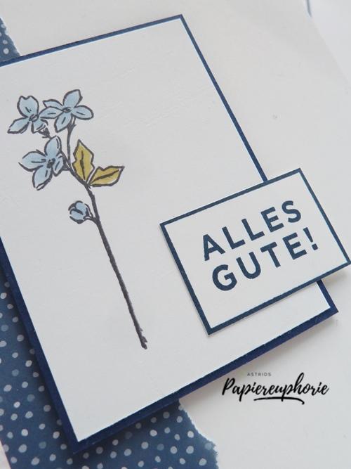 stampinup-glückwunsch-karte-birthdaycard-florale-jahreszeiten-astridspapiereuphorie-3_202007