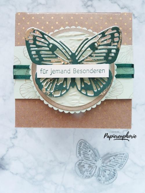 Sandfarbene Geschenkschachtel mit Schmetterling