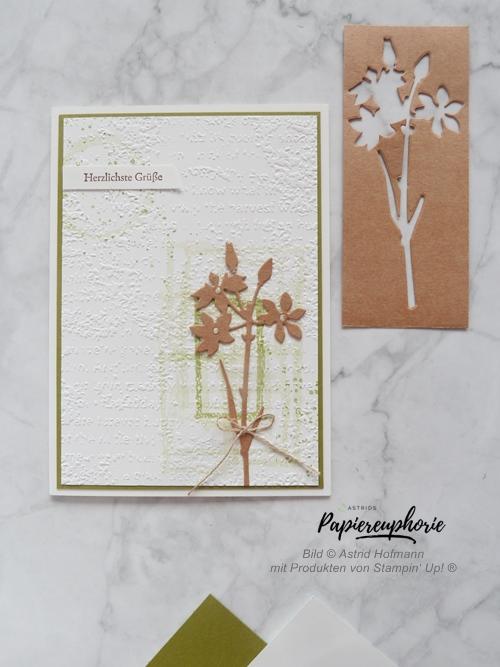 stampinup-grusskarte-wiesenruhe-vintage-druckschrift-astridspapiereuphorie-1